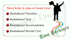 pioneer tours and travels kodaikanal